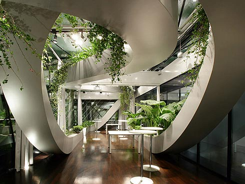 Сад дизайн своими руками